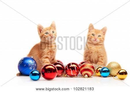 Two cute little red kittens sitting near colorful and sparkly Christmas toys and looking straight at