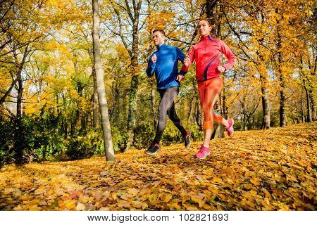 Friends jogging in autumn nature
