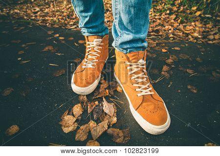Feet sneakers walking on fall leaves Outdoor Autumn season