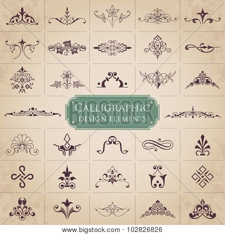 Calligraphic design elements - Vector set