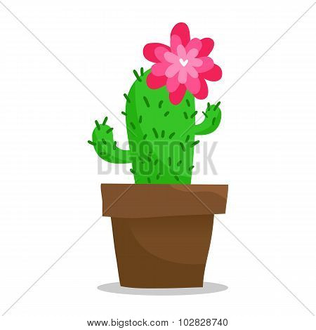 Blooming Cactus In Pot, Isolated On White