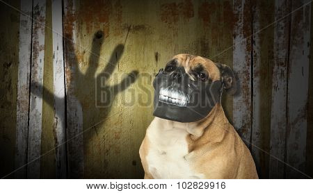 Dog in a scary mask for Halloween