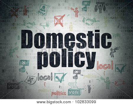 Political concept: Domestic Policy on Digital Paper background