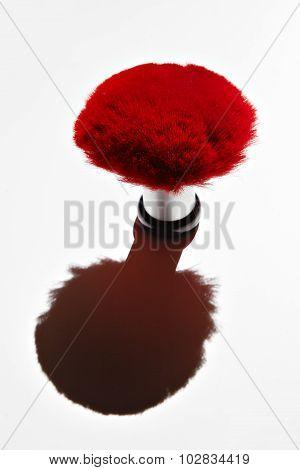 Big Red Brush