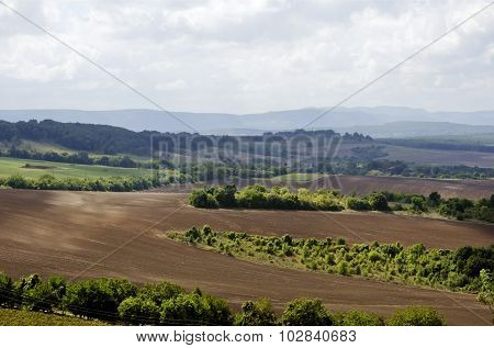 Fields Landscape