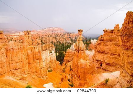 Vibrant Colors Of Bryce Canyon Hoodoos In The Rain