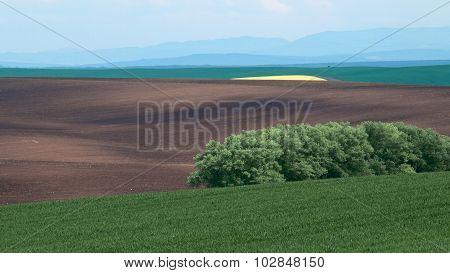Countryside Of Moravia