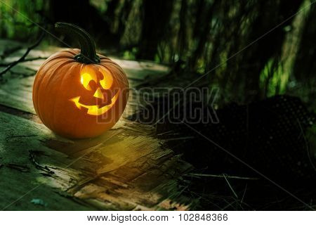 Glowing pumpkin for Halloween season