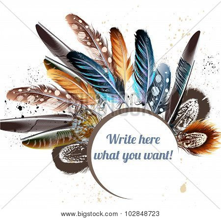 Vector Background With Colorful Feathers