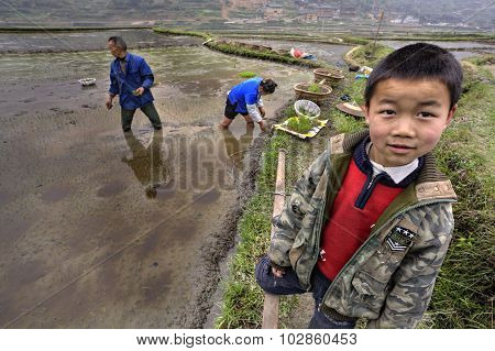 Asian Boy In Uniform Stands Next To Flooded Rice Field.