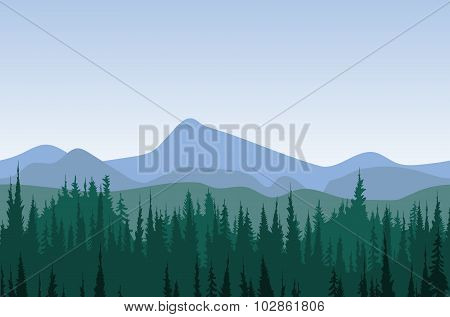 Forest mountain panorama