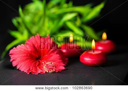 Beautiful Spa Background Of Red Hibiscus Flower, Bamboo And Candle With Drops, Closeup