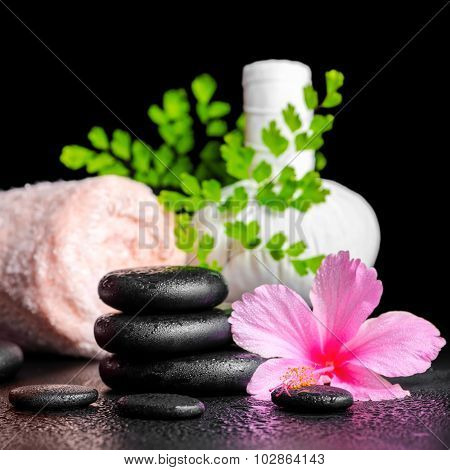Beautiful Spa Concept Of Pink Hibiscus Flower, Leaf Fern, Thai Herbal Compress Ball, Towel, Candle A