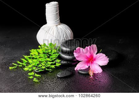 Beautiful Spa Background Of Pink Hibiscus Flower, Leaf Fern, Thai Herbal Compress Ball  And Stones W