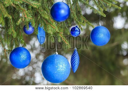 Outdoor Christmas blue glitter bauble ornaments hanging on spruce branch
