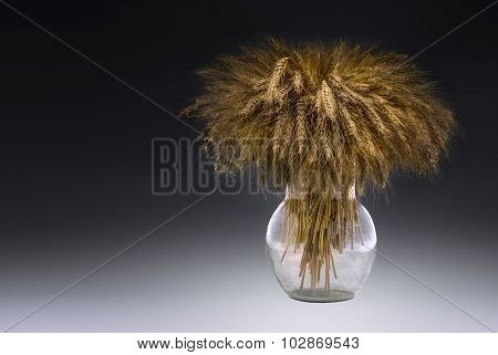Ears Of Grains In A Glass Vessel