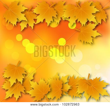 Autumn Leaves Background With Leaves On Top And Bottom