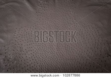 Ostrich leather