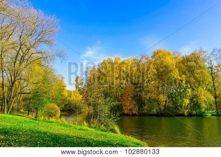 Autumn Scenery With Colourful Trees, Green Grass At Lake
