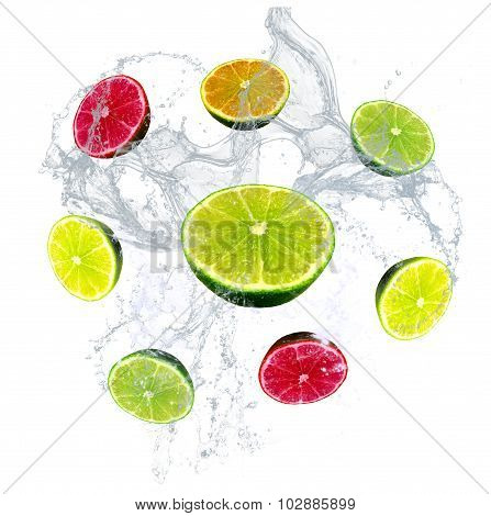 Fresh limes, lemon, orange and grapefruit with a water splash isolated on a white background