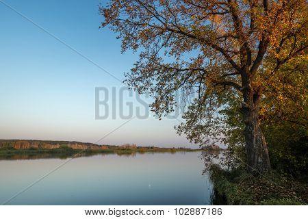 Calm lake with autumn trees on the coast. HDR shot
