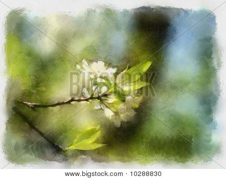 Watercolor Picture