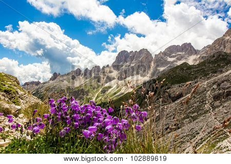 View Of The Rosengarten Group In The Dolomites, Italy
