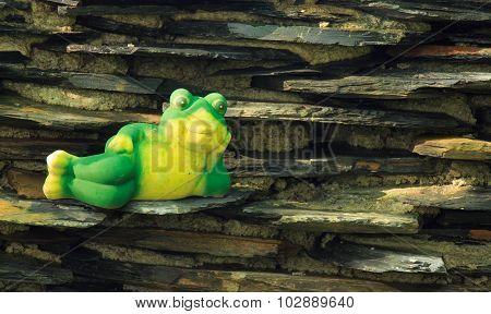 Frog Lying On The Stone Waterfall.