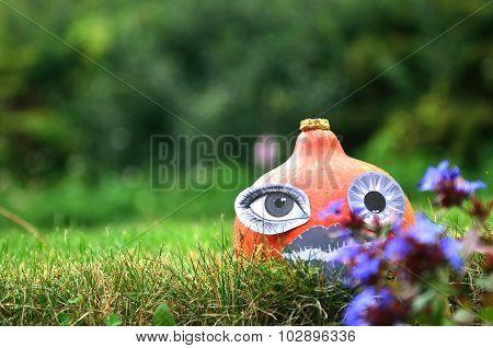 Pumpkin in the grass