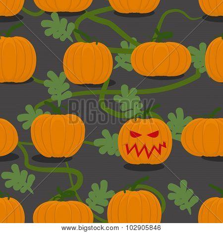 Scary Halloween Pumpkin Among Plantation Of Pumpkins. Pumpkin Farm Seamless Pattern. Vegetable Monst