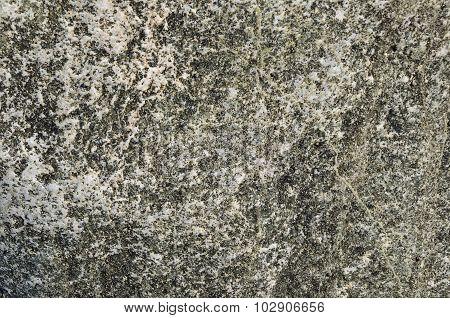 Mottled Stone Texture