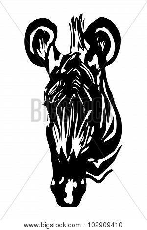 Zebra (head) - Graphic Design