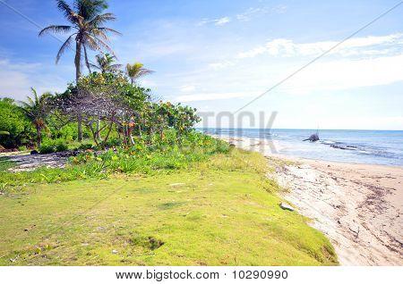 Undeveloped Beach Property Corn Island Nicaragua