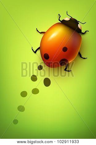 Vector ladybug losing its spots