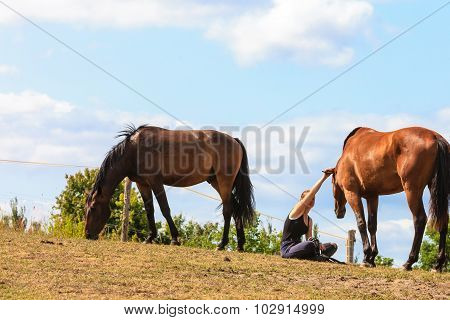 Woman Girl Taking Care Of Horse.