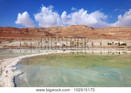 Israeli coast of the Dead Sea. Path from the salt winds picturesquely in salt water. Palms on the bank are reflected in smooth water
