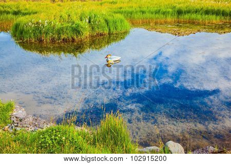 Iceland in the summer. Small lake with thermal water. In the smooth surface of the water reflects the sky and clouds