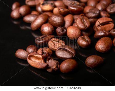 Coffe Beans!