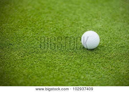 Golf ball on the green lawn, low depth of focus