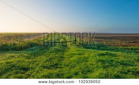 Tracks along a canal through a foggy sunny field