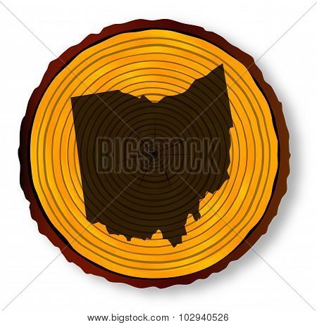 Ohio Map On Timber