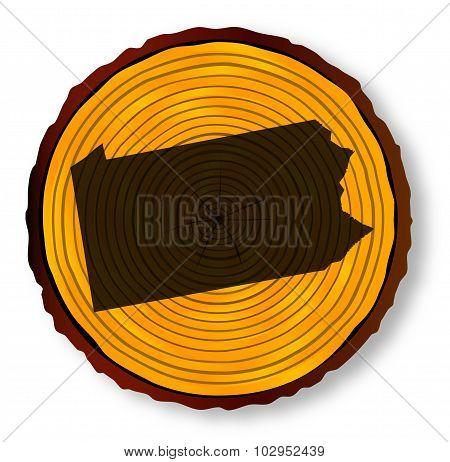 Pennsylvania Map On Timber