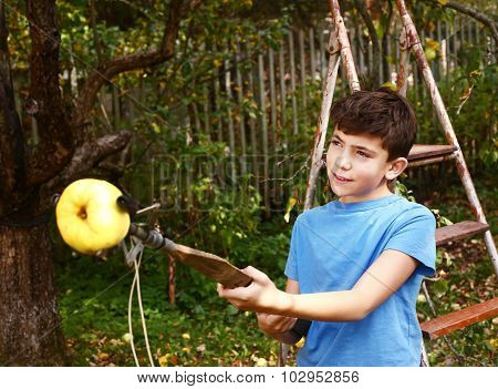 Boy Pluck Ripe Apples From The Tree With Special Device