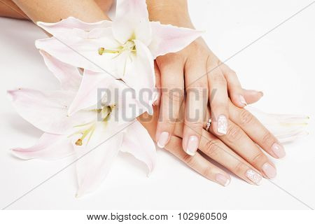 beauty delicate hands with manicure holding flower lily close up isolated on white