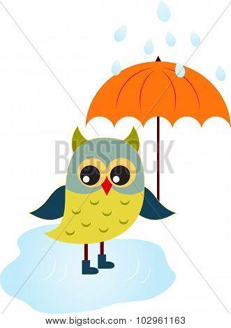 Owl Vector, Cartoon Owl with Umbrella