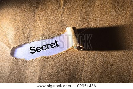 Torn Paper With Word Secret