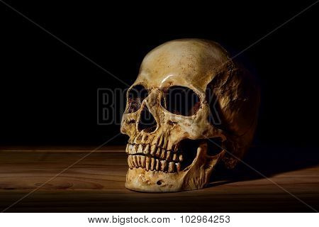 Still Life White Human Skull On Wooden Table And Dark Background