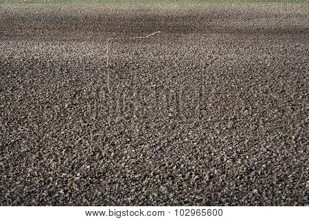 Fertile Soil Abstract