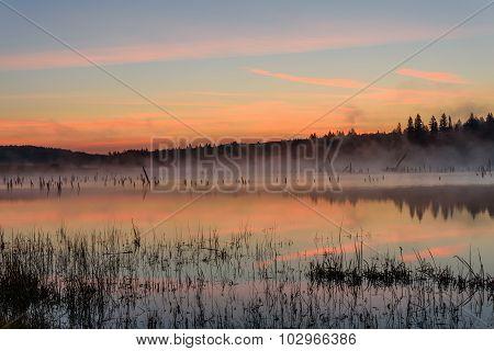 Lake Sunrise Fog Peach