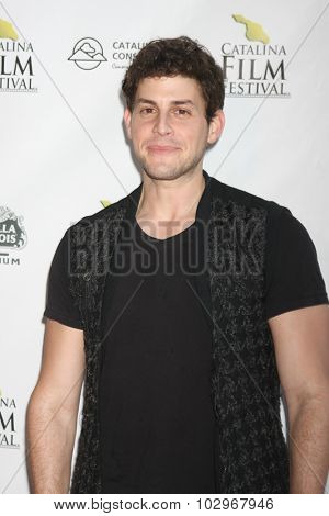 LOS ANGELES - SEP 25:  David Blue at the Catalina Film Festival Friday Evening Gala at the Avalon Theater on September 25, 2015 in Avalon, CA